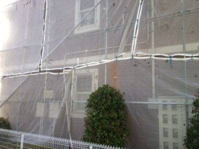 サイディング 外壁塗装�A